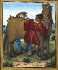 Two men grooming a horse ('fauveau') (f°11r) -- «Petit Livre d'Amour», by Pierre Sala, Paris and Lyon (France), 1st quarter of the 16th century [BL Stowe 955].