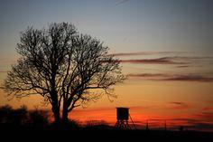Sonnenuntergang über einem Feld bei Bechstedtstraß im Weimarer Land. Foto: Alexander Volkmann