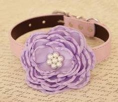 Lavender Flower dog collar, Wedding dog collar, Dog birthday gift, Pet wedding accessory, flowers with Pearls, dog collar, Purple, Lavender - LA Dog Store  - 1