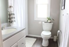 Collonade Gray vs Revere Pewter - The Battle is Over! - Kylie M Interiors.  Shown in this bathroom with dark wood floor, white cabinet.  Learn about the undertones of these grey paint colours to choose the best one for your room! #CollonadeGray #ReverePewter #BenjaminMoore #SherwinWilliamsGray