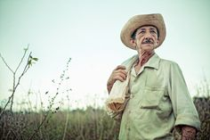 Photographs of Tobacco Fields in Cuba by April Maciborka
