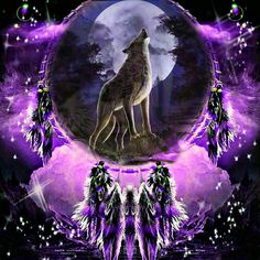 Dreamcatcher with Wolf Wolf Photos, Wolf Pictures, Wolf Background, Wolf Dreamcatcher, Indian Wolf, Native American Wolf, Dream Catcher Art, Wolf Artwork, Wolf Painting