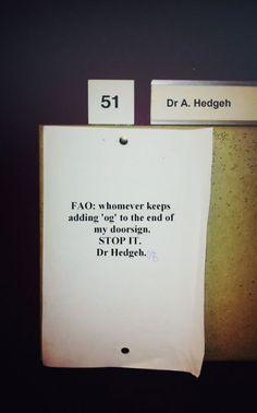 Dr. Hedgeh
