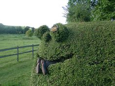 Hedge Monster 'Arggg'  we could totally do this!