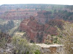 Park Family Insurance > Blog Grand Canyon North Rim