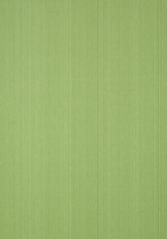 THALIA STRIE, Green, T14271, Collection Imperial Garden from Thibaut