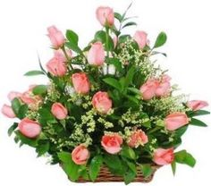 Send our Amazing Beautifull Flower Basket to your Loved Ones and See the Smiles on their Faces by Sending through Shop2Nellore. Send Flower Basket Along with other Gifts and make Feel them Surprise and Happy. We do have Midnight Home Delivery Service.