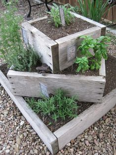 Rustic planter boxes of large herb garden. On Crooked Creek: thyme for herbs. , , - Rustic planter boxes of large herb garden. On Crooked Creek: thyme for herbs.