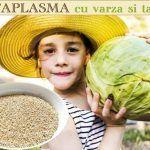 Idei de MESE (mic-dejun, prânz și cină) recomandate de dr. Mihaela Bilic celor care vor să SLĂBEASCĂ | La Taifas Dale Carnegie, Sciatica, Cabbage, Vegetables, Varicose Veins, Salads, Cabbages, Vegetable Recipes, Brussels Sprouts