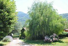"""Maison à Puivert, France. A Lescale, entre l'Ariège et les Pyrénées Orientales, au pied du plateau de Sault, l'étape """" LES MILLE PAS """" vous accueille sur le Sentier Cathare au coeur de la région de Puivert. C'est une maison indépendante tout confort, avec un jardin harmoni..."""