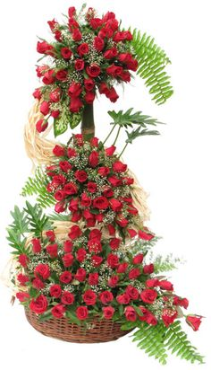 Height of Love (LOVERS PARADISE ) Four Feet tall,Deep Red Roses arrangement of 150 Roses and selected ferns and greens to go with, for your Loved One.