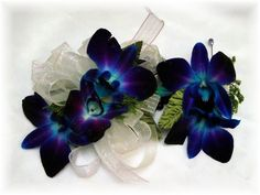 Blue-violet dendrobium orchid or galaxy orchid. It seems they are hard to find at florists in the U. From what I have seen, they are popular in the South Pacific/Oceania countries Orchid Corsages, Orchid Bouquet, Bouquets, Blue Orchid Tattoo, Blue Dendrobium Orchids, Homecoming Flowers, Aquarium Wedding, Corsage And Boutonniere, Corsage Wedding