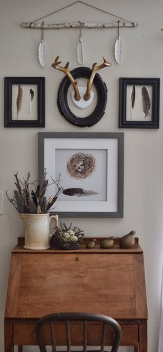 Shabby Love: Feathered Gallery Wall