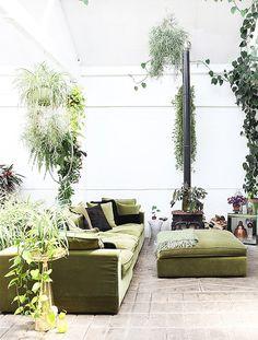 botanical light-filled loft.