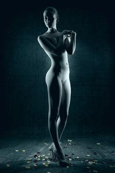 Elements - Stefan Gesell.