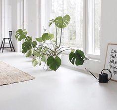 #gietvloer #liquidfloor #interieur #vloer #flooring #livingroom #livingroomideas #livingroomdecor #interiordesign #interieurinspiratie #concretefloors