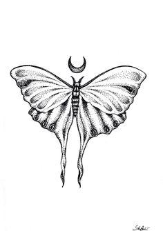 Moon moth tattoo: Actias luna moon moth black pen black and white tattoo draw my art