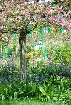 Apple tree, Giverny France by p'titesmith12, via Flickr. Already looks like a painting :)