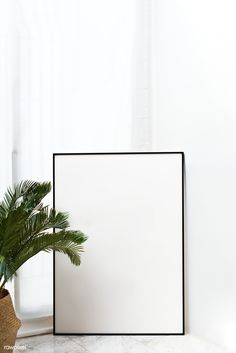 Blank black frame mockup by palm leaves | premium image by rawpixel.com / KUTTHALEEYO Flower Background Wallpaper, Framed Wallpaper, Theme Background, Wallpaper Iphone Cute, Flower Backgrounds, Background Pictures, Wallpaper Backgrounds, Vector Background, Wallpapers