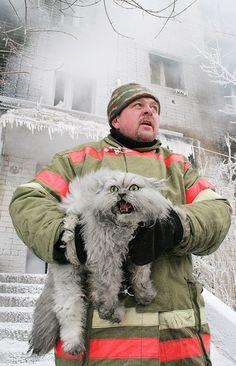 Кот и пожарный- sometime in Russia fireman rescues а cat