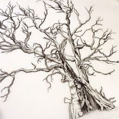 Wonderful tattoo artist. I really like her style.  [ wedding tree ] for Tobias.