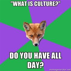 I might pin all of these- Anthropology Fox!