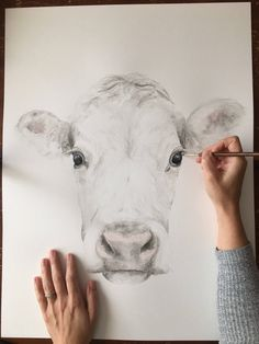 A personal favorite from my Etsy shop https://www.etsy.com/listing/581445764/large-18x24-darling-cow-watercolor-art