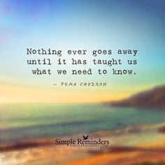 Nothing ever goes away until it has taught us what we need to know. — Pema Chodron