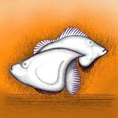 SEGRETI amici dal mare  pesci tropicali progetto scatola