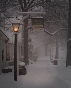 Colonial Williamsburg In The Snow