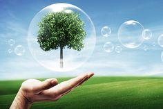 Como miembro de la asociación Rewindo GmbH la protección del medio ambiente y la conservación de recursos están muy presentes en nuestra gestión diaria y son en la actualidad, absolutamente indispensables.