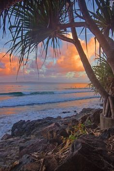The coral coast of Bundaberg offers a large range of experiences for going to tourists and tourists. Its geographical area provides the ultimate access to the southern Terrific Barrier Reef's tourist attractions. Australia Beach, Visit Australia, Queensland Australia, Australia Travel, Western Australia, Australia Living, South Australia, Beach Aesthetic, Travel Aesthetic