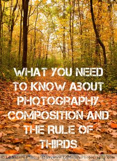 What you need to know about photography composition and the rule of thirds.