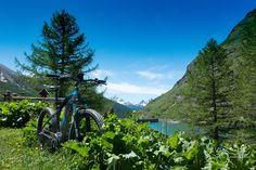RideandClick @ Bardonecchia (To) - 23-Luglio https://www.evensi.com/ride-ampclick-bardonecchia-to/214370053