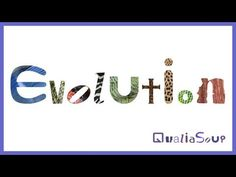 Evolution video. Such a great explanation. For anyone who doesn't understand evolution, this provides a very simple overview.
