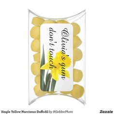 Single Yellow Narcissus Daffodil Chewing Gum Favors - $6.00 - Single Yellow Narcissus Daffodil Chewing Gum Favors - by #RGebbiePhoto @ zazzle - #yellow #daffodil #flower - A vibrant yellow narcissus daffodil over white. Personalize this line with customizable text! Add Your Name to customize! Symbolizing rebirth and new beginnings, the daffodil is virtually synonymous with spring.