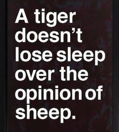 Opinion of sheep