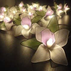 Thai Vintage Handmade 20 White Orchid Flower Fairy String Lights Wedding Party Floral Home Decor 3.5m Fairy String Lights,http://www.amazon.com/dp/B009T1T188/ref=cm_sw_r_pi_dp_n36atb012J5E98ZA