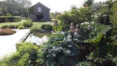 ERIC LEQUERTIER : création de jardin italien - Saint Malo