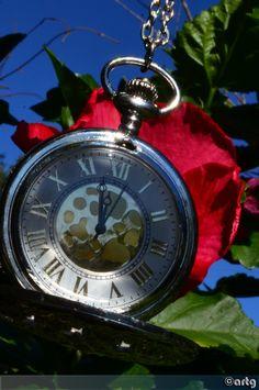 May Photo A Day,  Day 26 - '12 O'clock'