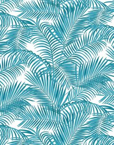 Majestic Palm wallpaper - Turquoise on White