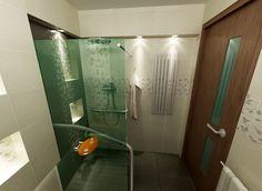 Łazienka zaadaptowana dla potrzeb osoby niepełnosprawnej. CD
