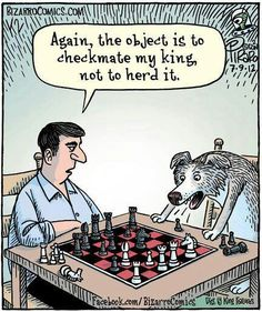 So THAT's why border collies are no good at chess.