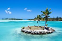 #Polynesia #Tuamotu #Islands - Marvelous view of an islet with coconut palms on crystalline sea.