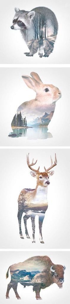 double exposures by andreas lie