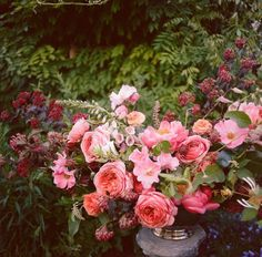 Corals and pinks--add some more deep pinks (like bougainvillea) and some peach/apricot, for our overall color palette