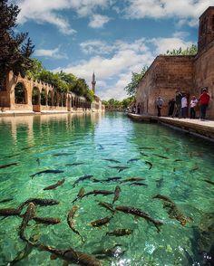 Balıklıgöl / Şanlıurfa Turkey