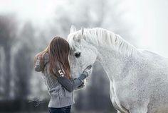 Het weekend zit er weer bijna op Een leuke afsluiter met een foto van Nienke en haar lieve paardje!  Wil je ook een fotoshoot? Stuur een pb voor meer info  www.elianevanschaikphotography.com #whitehorse #arabian #arabier #arabianhorse #love #horselove #snow #winter #snow #winterhorse #blackhorse #horse #equine #equinephotography #paard #paarden #paardenfotografie #pferdefotografie #instahorse #bestofhorses #fotografie #photography #horses #horsephoto #featurehorse #paardenfotograaf…