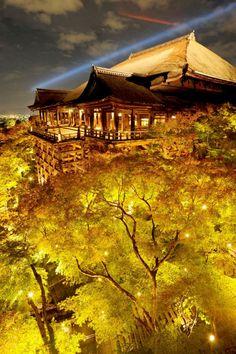 試験点灯でライトアップされ、紅葉の中に浮かび上がった「清水の舞台」(14日夜、京都市東山区の清水寺)=共同 より