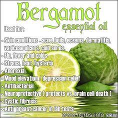 Bergamot essential oil.   Re-Pinned publicly by www.DianesOils.com :)